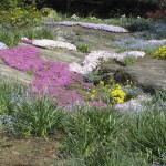 Heather Gardens in Spring